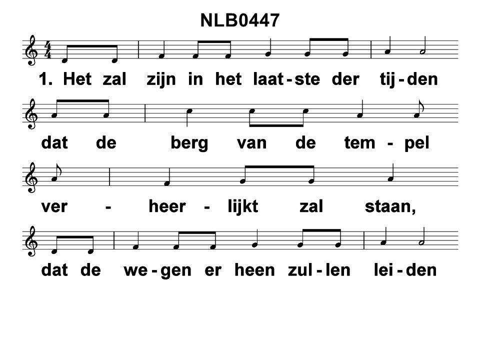 NLB0447