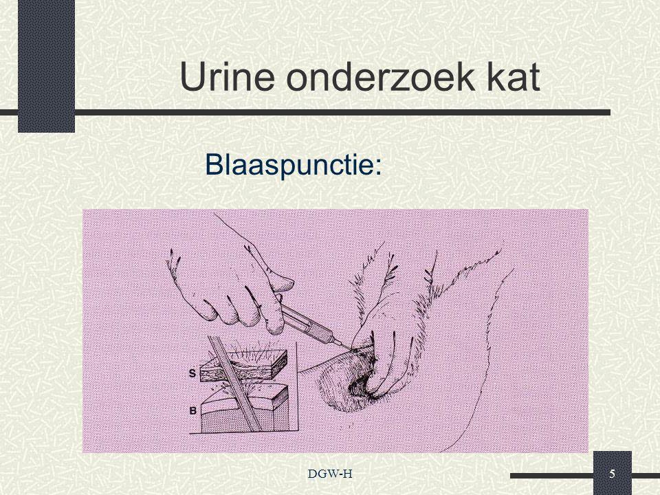 Urine onderzoek kat Blaaspunctie: DGW-H5