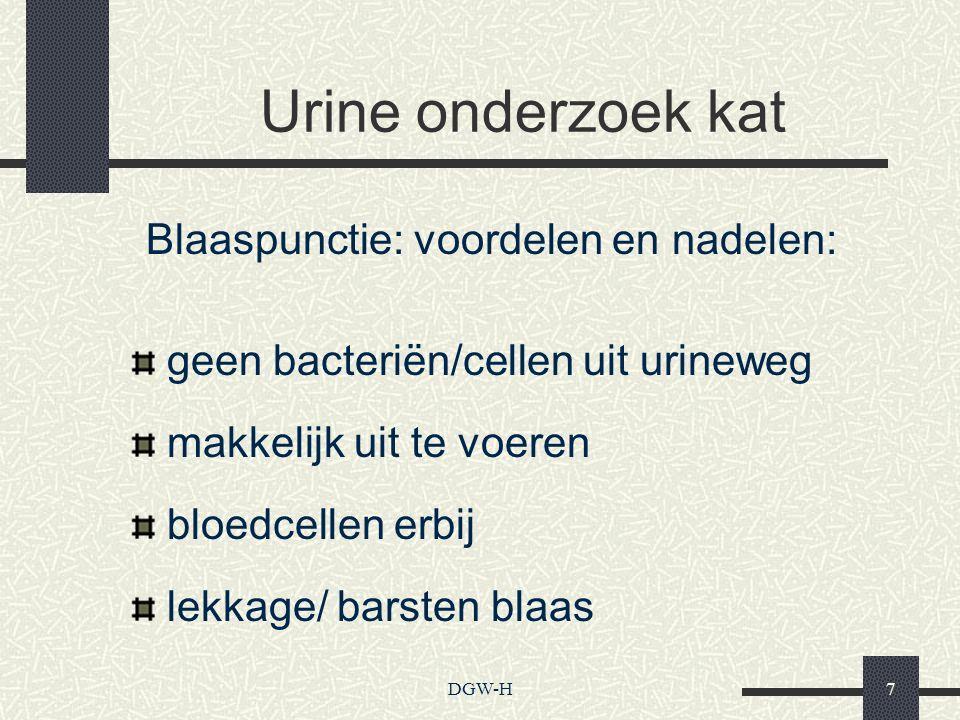 Urine onderzoek kat Blaaspunctie: voordelen en nadelen: geen bacteriën/cellen uit urineweg makkelijk uit te voeren bloedcellen erbij lekkage/ barsten