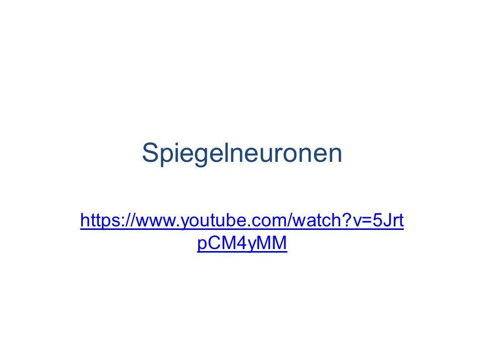 Spiegelneuronen https://www.youtube.com/watch?v=5Jrt pCM4yMM