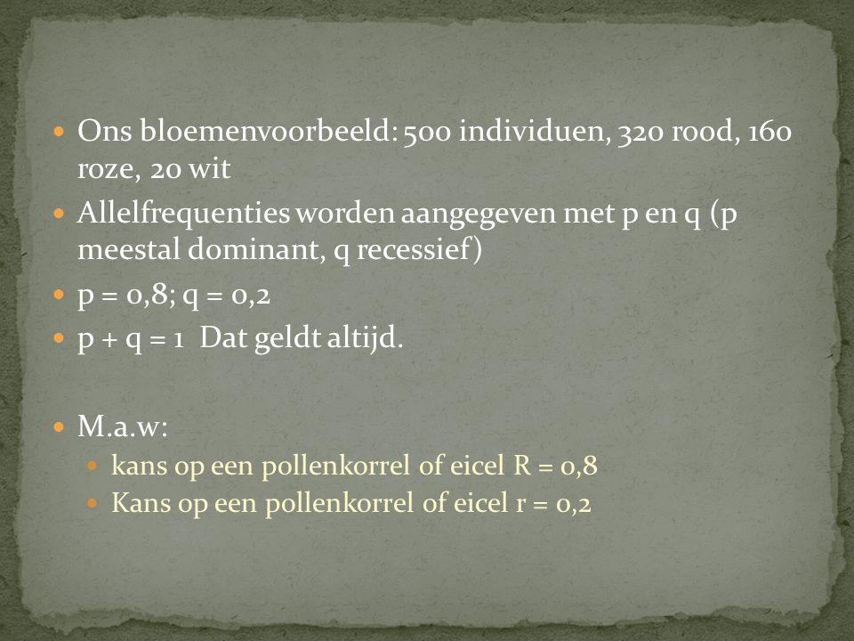 Ons bloemenvoorbeeld: 500 individuen, 320 rood, 160 roze, 20 wit Allelfrequenties worden aangegeven met p en q (p meestal dominant, q recessief) p = 0