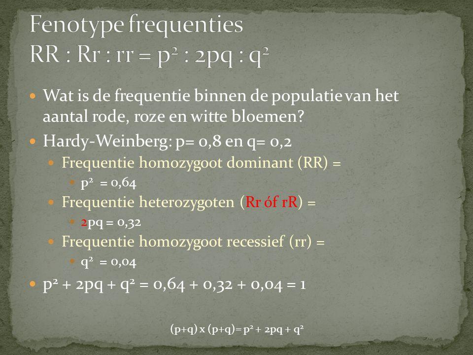 Wat is de frequentie binnen de populatie van het aantal rode, roze en witte bloemen? Hardy-Weinberg: p= 0,8 en q= 0,2 Frequentie homozygoot dominant (