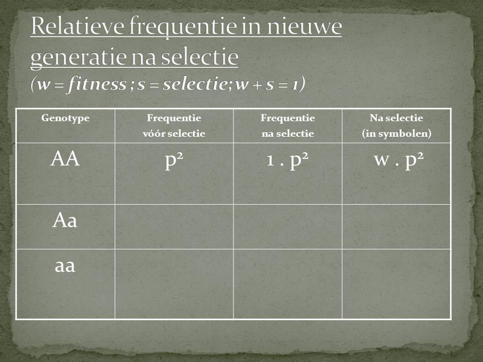 GenotypeFrequentie vóór selectie Frequentie na selectie Na selectie (in symbolen) AAp2p2 1. p 2 w. p 2 Aa aa