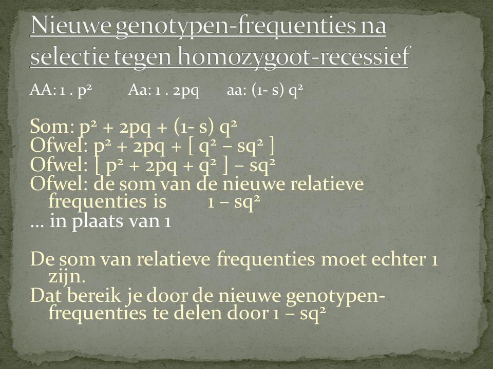 AA: 1. p 2 Aa: 1. 2pqaa: (1- s) q 2 Som: p 2 + 2pq + (1- s) q 2 Ofwel: p 2 + 2pq + [ q 2 – sq 2 ] Ofwel: [ p 2 + 2pq + q 2 ] – sq 2 Ofwel: de som van