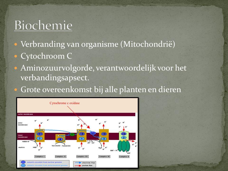 Verbranding van organisme (Mitochondrië) Cytochroom C Aminozuurvolgorde, verantwoordelijk voor het verbandingsapsect. Grote overeenkomst bij alle plan