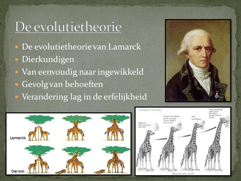 De evolutietheorie van Lamarck Dierkundigen Van eenvoudig naar ingewikkeld Gevolg van behoeften Verandering lag in de erfelijkheid