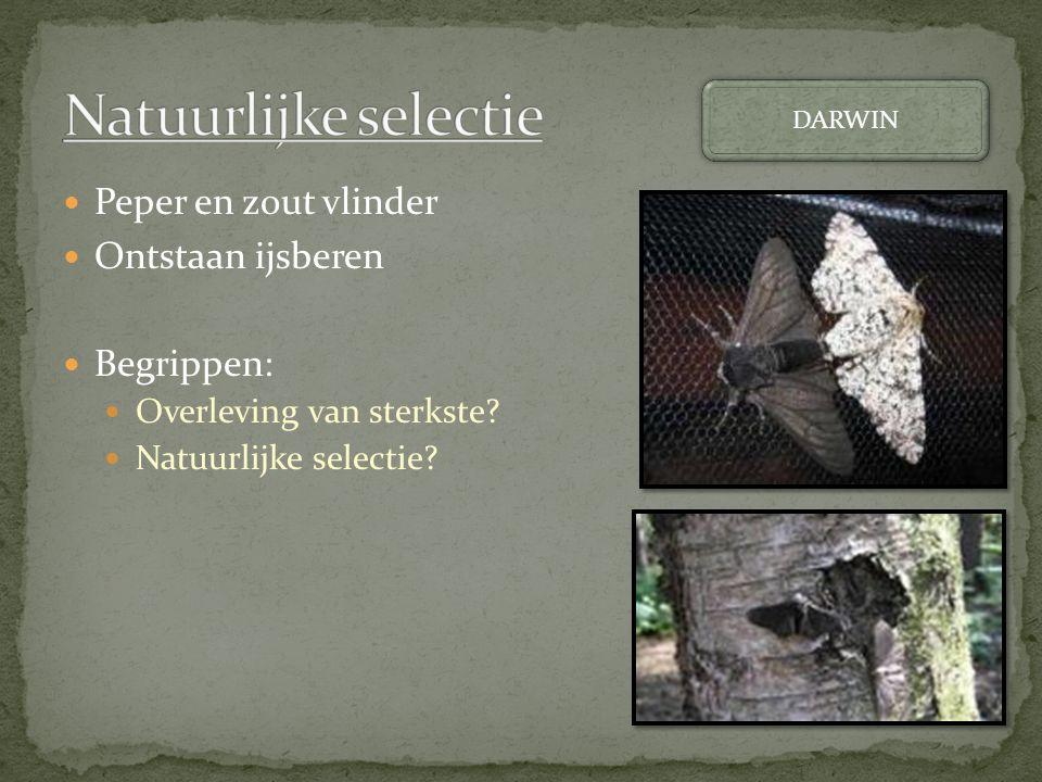 Peper en zout vlinder Ontstaan ijsberen Begrippen: Overleving van sterkste? Natuurlijke selectie? DARWIN