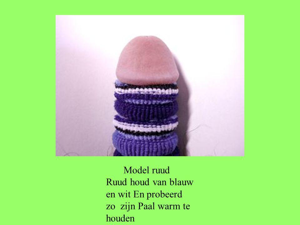 Model ruud Ruud houd van blauw en wit En probeerd zo zijn Paal warm te houden