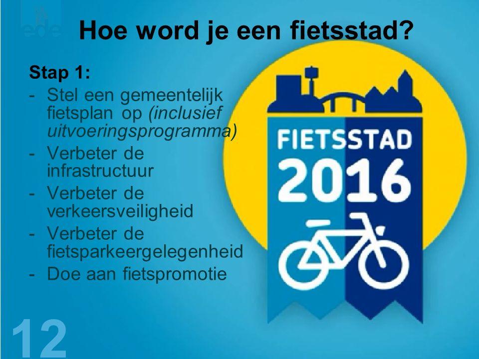 13 Hoe word je een fietsstad.