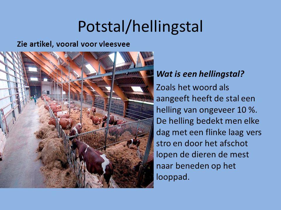 Potstal/hellingstal Zie artikel, vooral voor vleesvee Wat is een hellingstal? Zoals het woord als aangeeft heeft de stal een helling van ongeveer 10 %