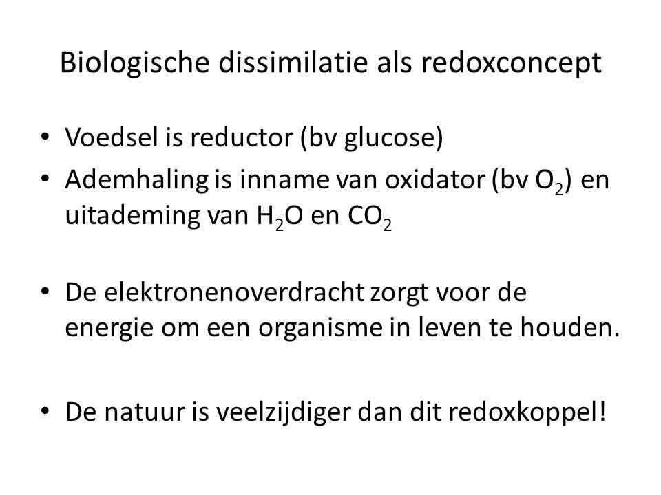 Biologische dissimilatie als redoxconcept Voedsel is reductor (bv glucose) Ademhaling is inname van oxidator (bv O 2 ) en uitademing van H 2 O en CO 2 De elektronenoverdracht zorgt voor de energie om een organisme in leven te houden.