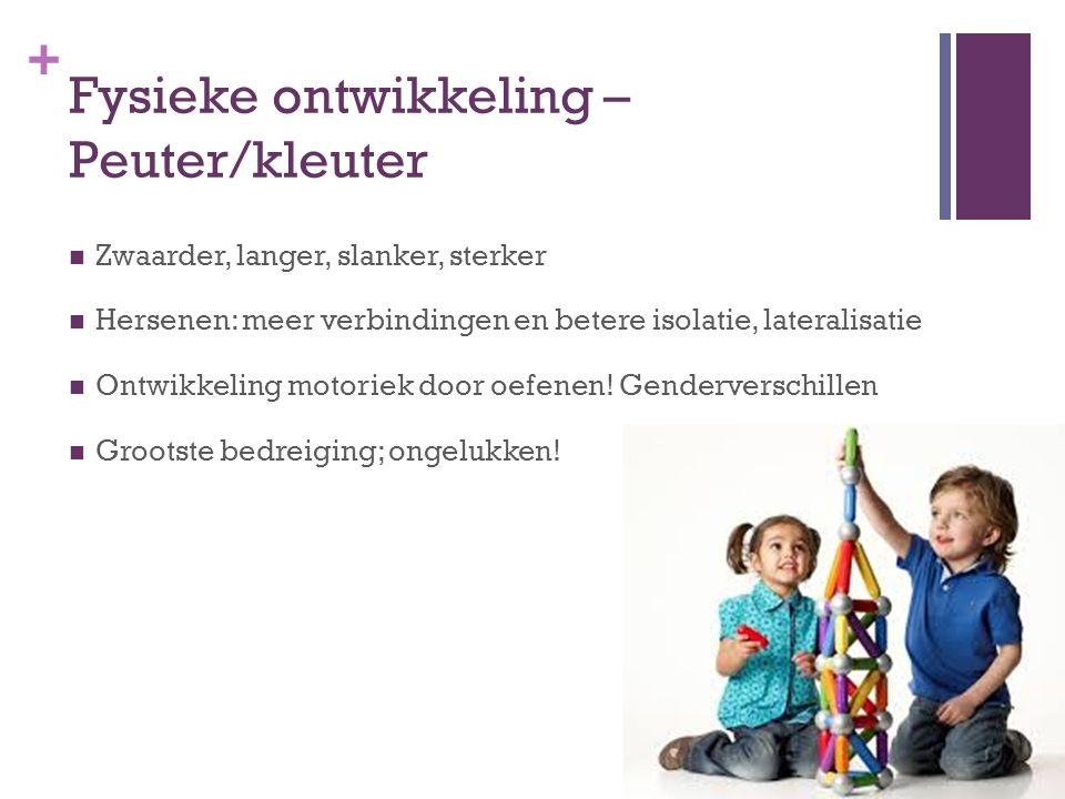 + Sociale en persoonlijkheidsontw.Schoolleeftijd Zelfbeeld volgens Erikson Vlijt vs.