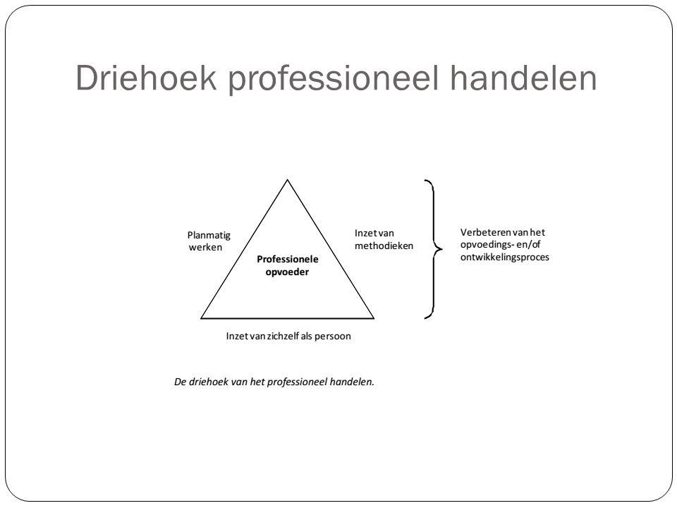 Driehoek professioneel handelen