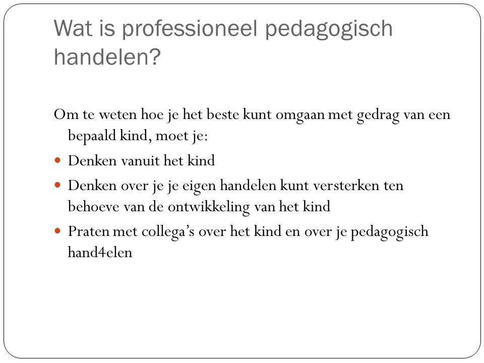 Wat is professioneel pedagogisch handelen.