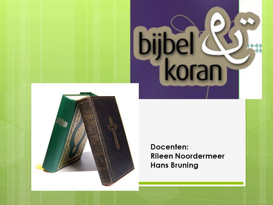 Docenten: Rileen Noordermeer Hans Bruning