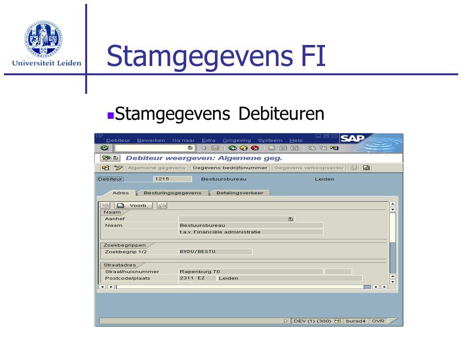 Stamgegevens FI Stamgegevens Debiteuren
