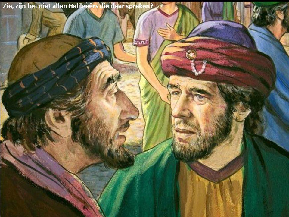 Zie, zijn het niet allen Galileeërs die daar spreken?