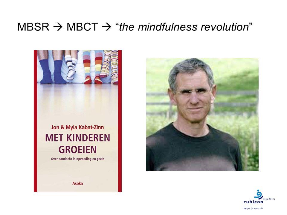 """MBSR  MBCT  """"the mindfulness revolution"""""""