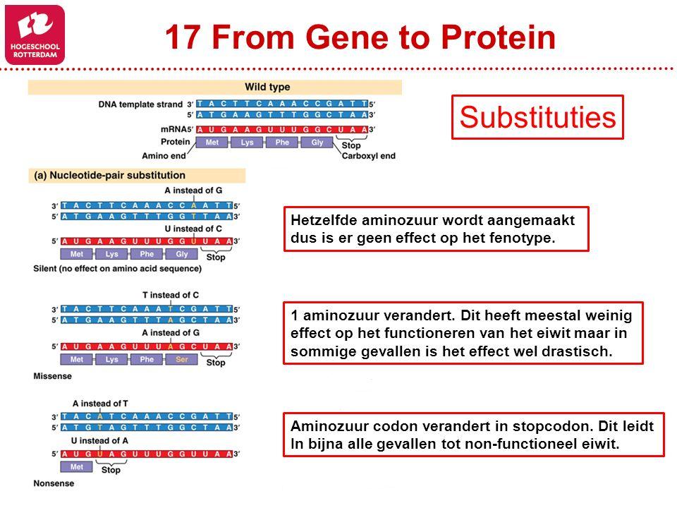 17 From Gene to Protein Hetzelfde aminozuur wordt aangemaakt dus is er geen effect op het fenotype. 1 aminozuur verandert. Dit heeft meestal weinig ef