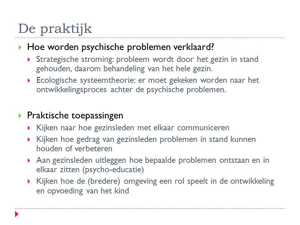 De praktijk  Hoe worden psychische problemen verklaard?  Strategische stroming: probleem wordt door het gezin in stand gehouden, daarom behandeling