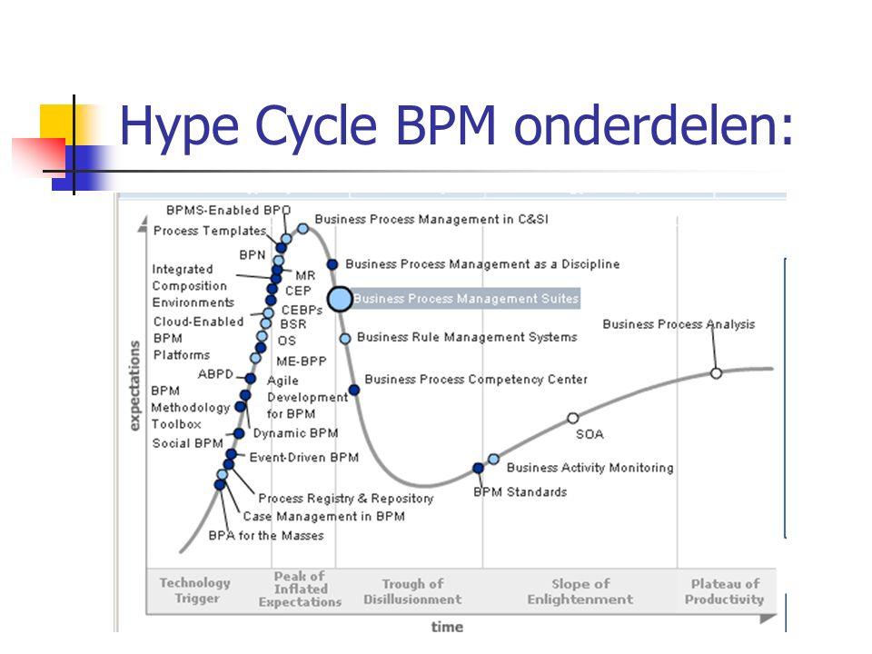 Hype Cycle BPM onderdelen: