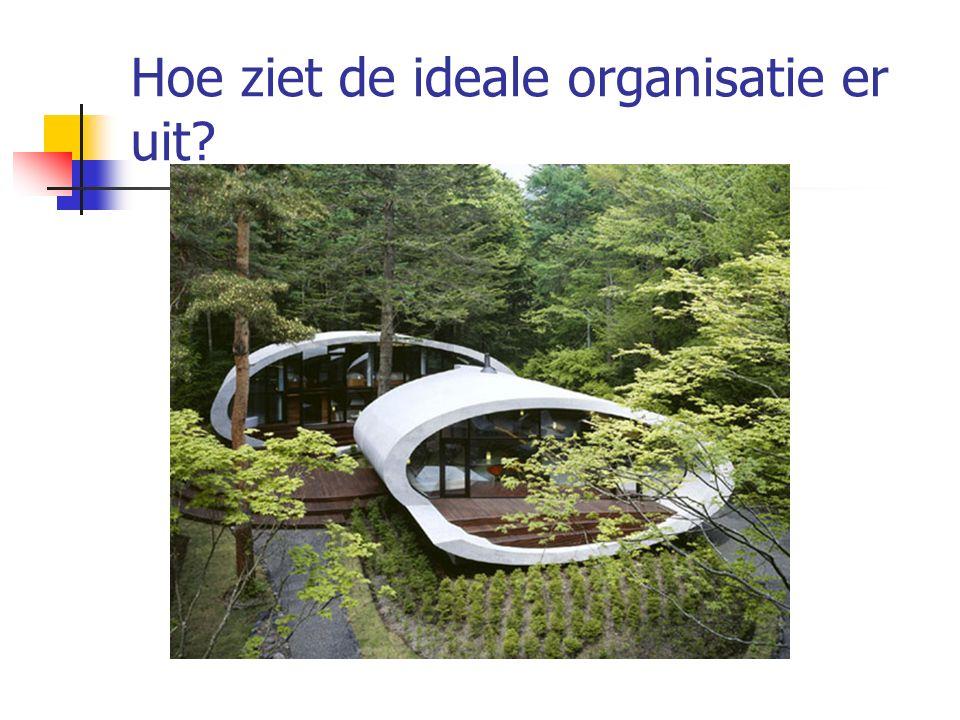 Hoe ziet de ideale organisatie er uit?