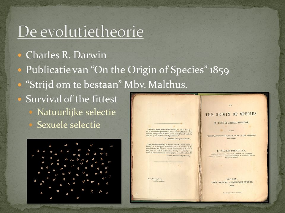 "Charles R. Darwin Publicatie van ""On the Origin of Species"" 1859 ""Strijd om te bestaan"" Mbv. Malthus. Survival of the fittest Natuurlijke selectie Sex"
