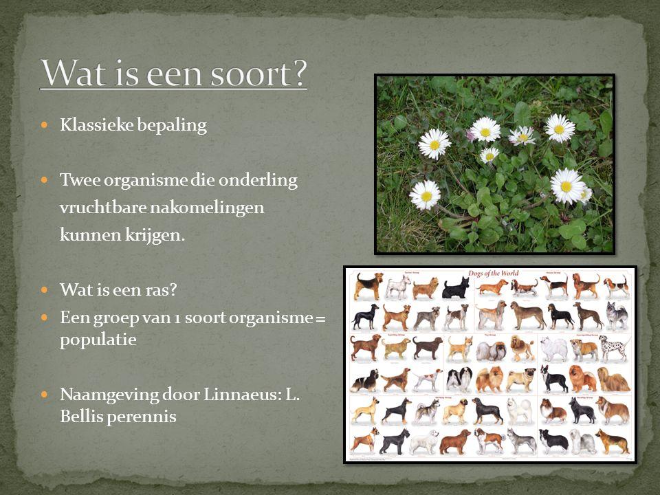 Klassieke bepaling Twee organisme die onderling vruchtbare nakomelingen kunnen krijgen. Wat is een ras? Een groep van 1 soort organisme = populatie Na