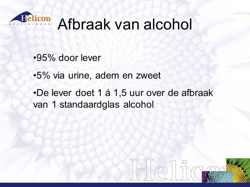 Afbraak van alcohol 95% door lever 5% via urine, adem en zweet De lever doet 1 á 1,5 uur over de afbraak van 1 standaardglas alcohol