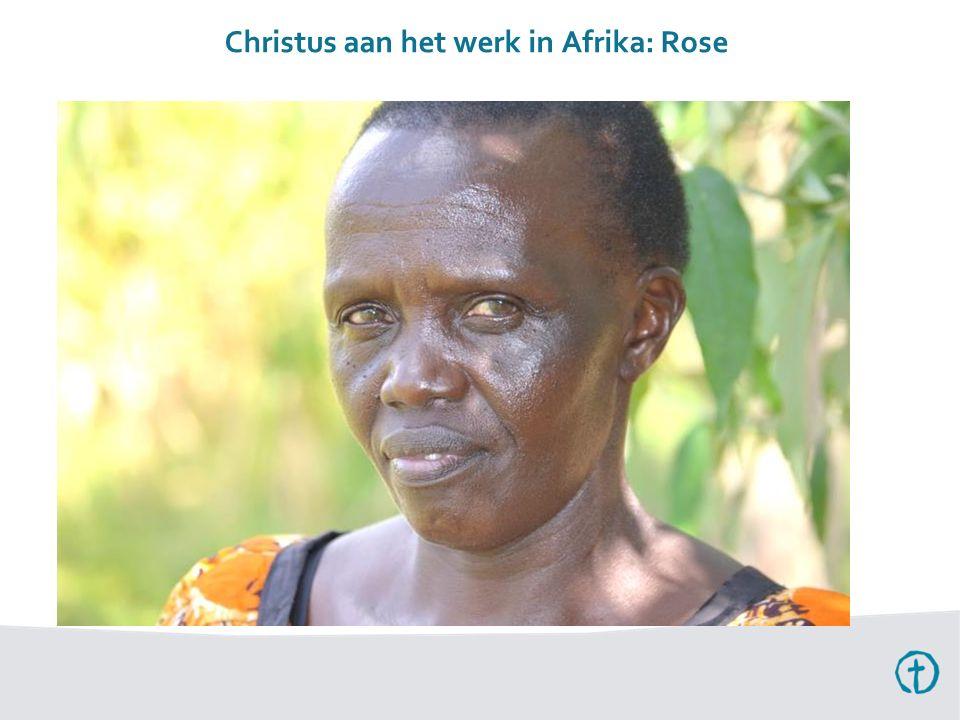 Christus aan het werk in Afrika: Rose