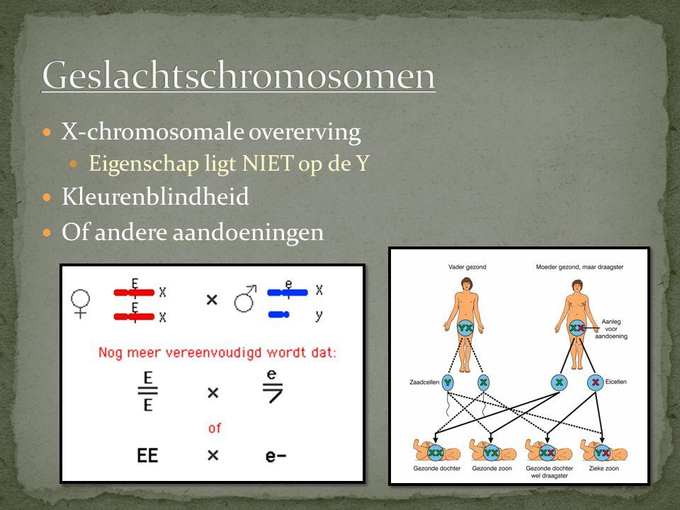 X-chromosomale overerving Eigenschap ligt NIET op de Y Kleurenblindheid Of andere aandoeningen
