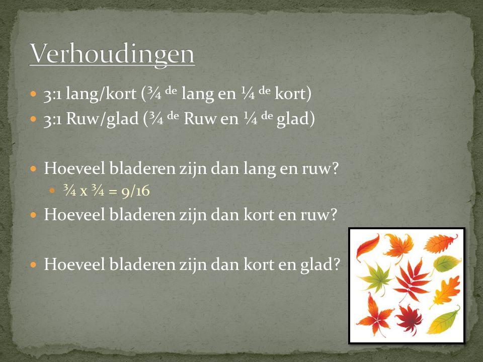 3:1 lang/kort (¾ de lang en ¼ de kort) 3:1 Ruw/glad (¾ de Ruw en ¼ de glad) Hoeveel bladeren zijn dan lang en ruw? ¾ x ¾ = 9/16 Hoeveel bladeren zijn