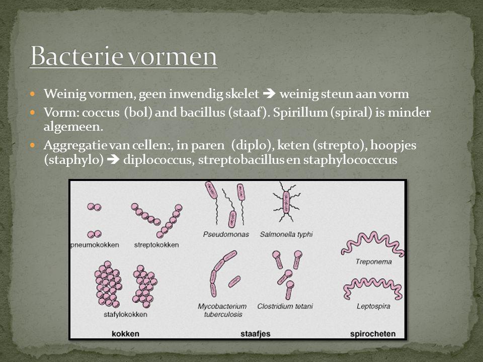 Gram negatieve bacterie: crystal violet, hecht niet aan celwand.