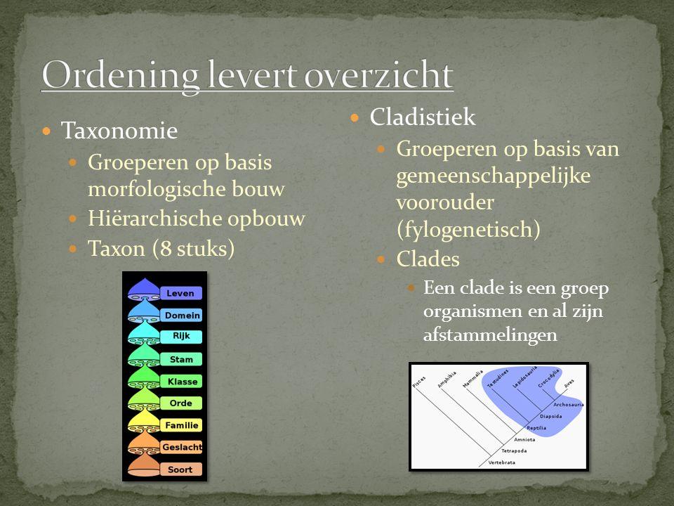 Taxonomie Groeperen op basis morfologische bouw Hiërarchische opbouw Taxon (8 stuks) Cladistiek Groeperen op basis van gemeenschappelijke voorouder (f