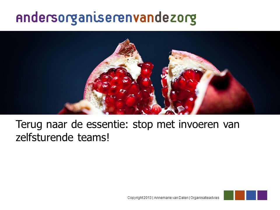 Copyright 2013 | Annemarie van Dalen | Organisatieadvies Terug naar de essentie: stop met invoeren van zelfsturende teams!