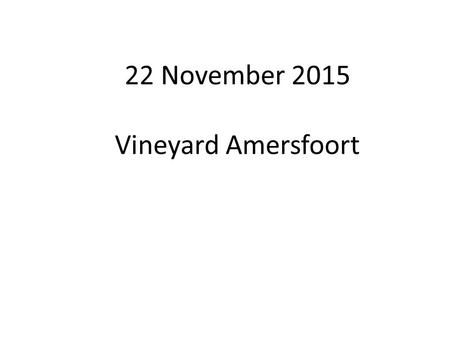 22 November 2015 Vineyard Amersfoort