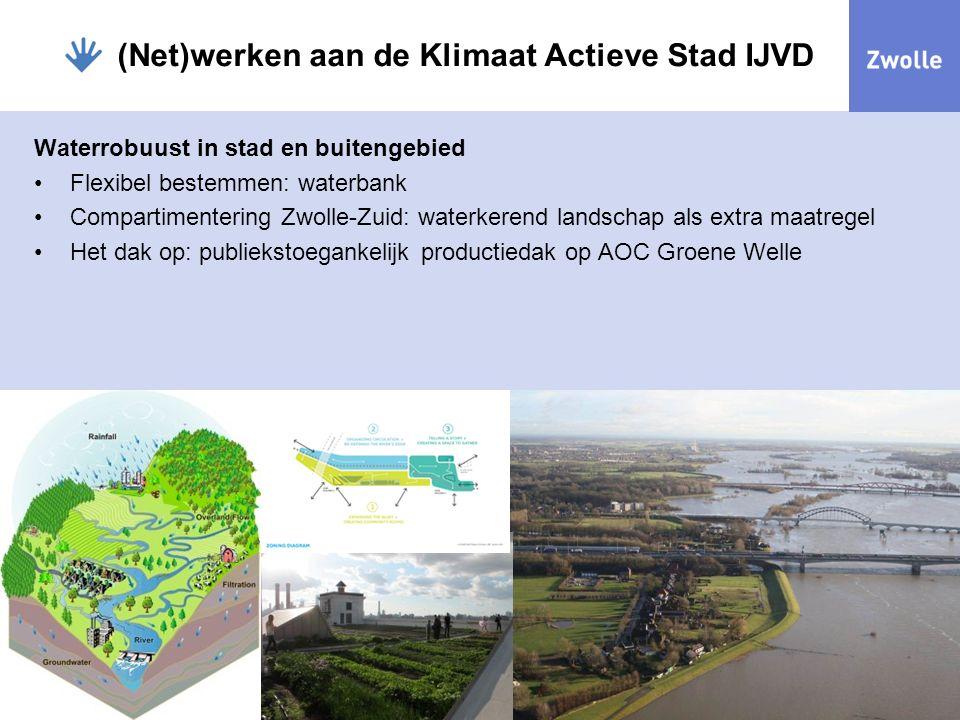 (Net)werken aan de Klimaat Actieve Stad IJVD Waterrobuust in stad en buitengebied Flexibel bestemmen: waterbank Compartimentering Zwolle-Zuid: waterke