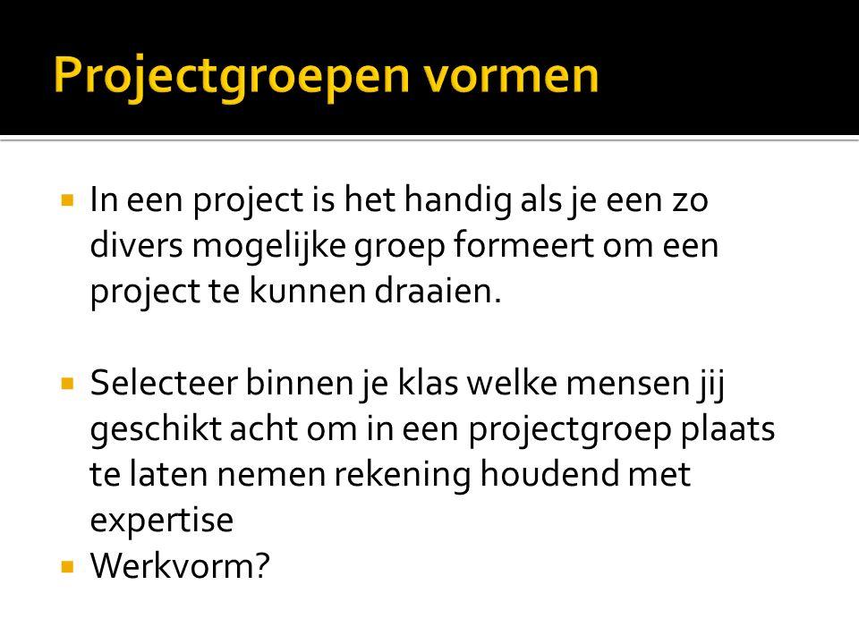  In een project is het handig als je een zo divers mogelijke groep formeert om een project te kunnen draaien.