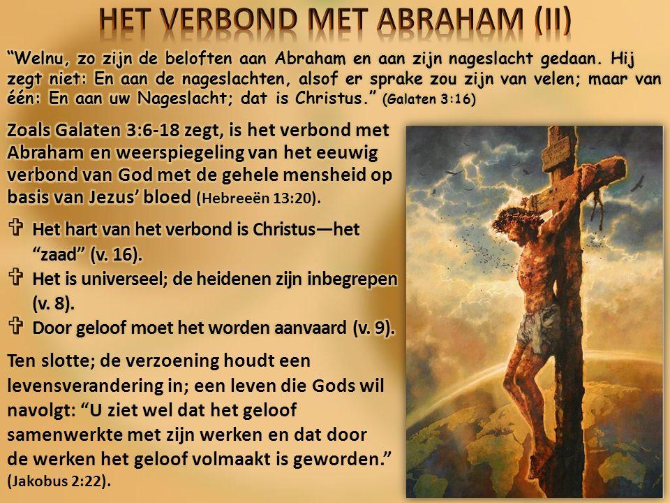 GOD'S TOEWIJDING Zegen.Persoonlijk. Deuteronomium 4:6 Universeel.
