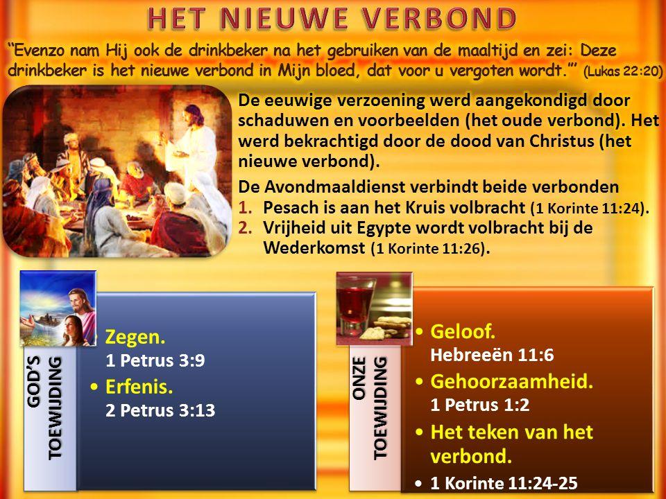 GOD'S TOEWIJDING Zegen. 1 Petrus 3:9 Erfenis. 2 Petrus 3:13 ONZE TOEWIJDING Geloof.