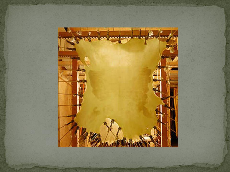 Vleeszijde Lichter van kleur Zachter Gladder Droogt bol op Puntjes zichtbaar van haarzakjes Taaier Geler Ruwer Droogt hol op Haarzijde