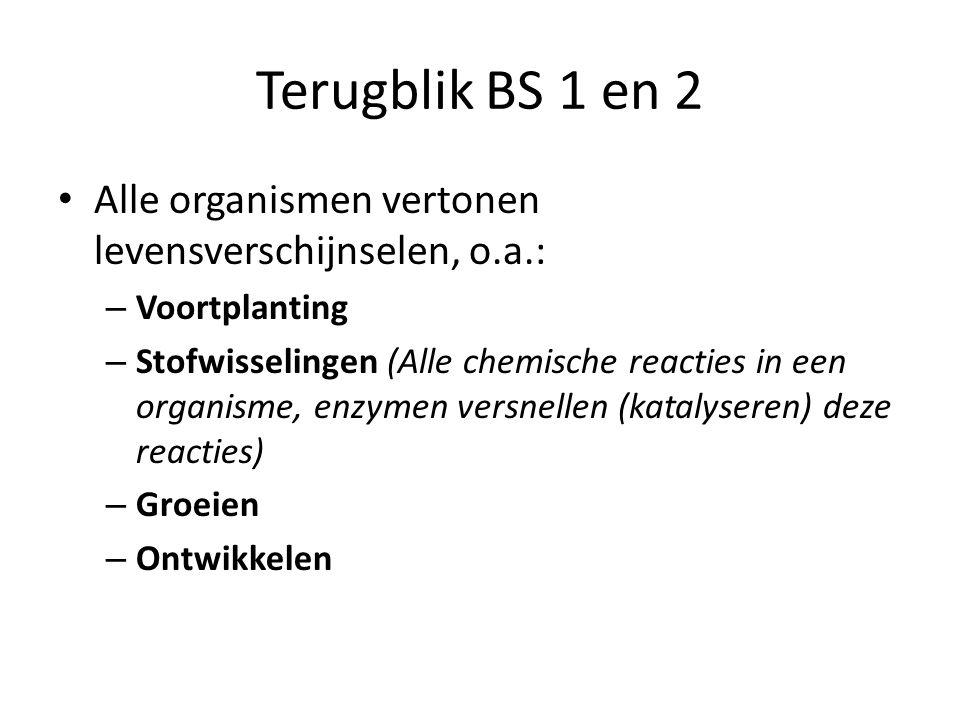 Alle organismen vertonen levensverschijnselen, o.a.: – Voortplanting – Stofwisselingen (Alle chemische reacties in een organisme, enzymen versnellen (katalyseren) deze reacties) – Groeien – Ontwikkelen Terugblik BS 1 en 2