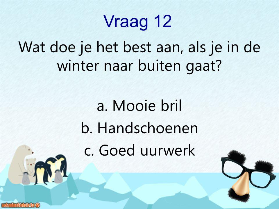 Vraag 12 Wat doe je het best aan, als je in de winter naar buiten gaat? a. Mooie bril b. Handschoenen c. Goed uurwerk