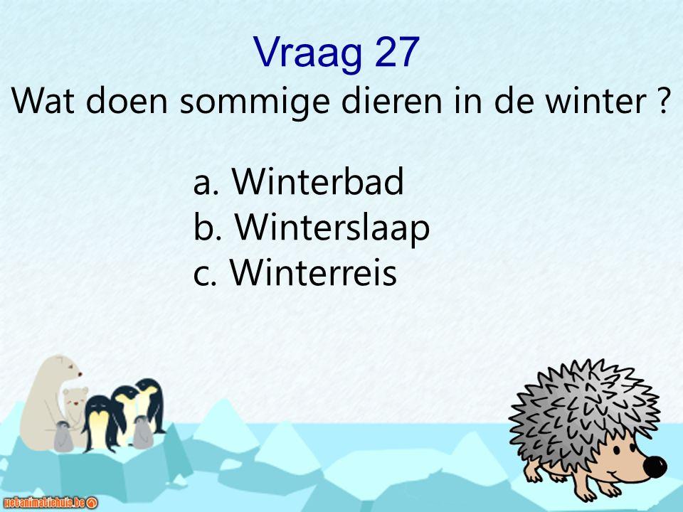 Vraag 27 Wat doen sommige dieren in de winter ? a. Winterbad b. Winterslaap c. Winterreis