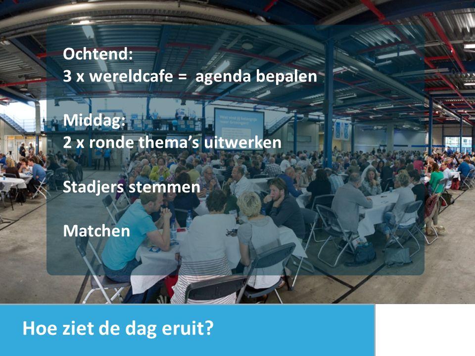 Ochtend: 3 x wereldcafe = agenda bepalen Middag: 2 x ronde thema's uitwerken Stadjers stemmen Matchen Hoe ziet de dag eruit?