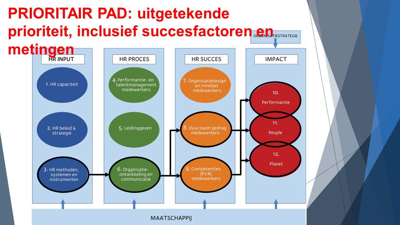 PRIORITAIR PAD: uitgetekende prioriteit, inclusief succesfactoren en metingen