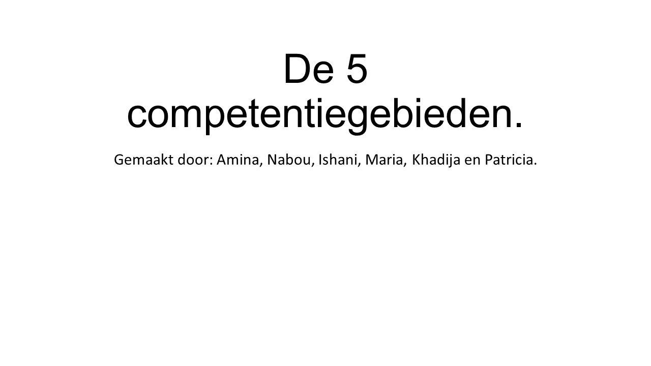 De 5 competentiegebieden. Gemaakt door: Amina, Nabou, Ishani, Maria, Khadija en Patricia.