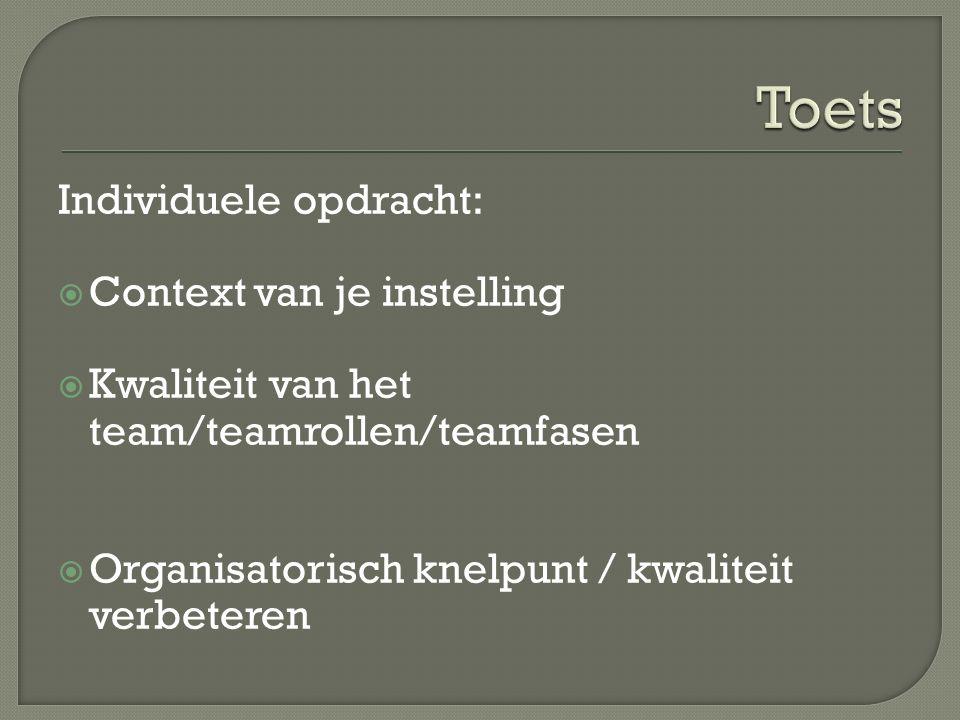 Individuele opdracht:  Context van je instelling  Kwaliteit van het team/teamrollen/teamfasen  Organisatorisch knelpunt / kwaliteit verbeteren