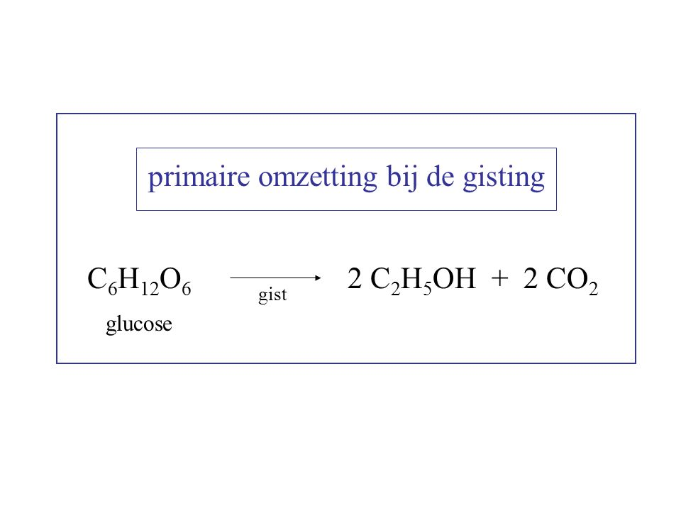 primaire omzetting bij de gisting C 6 H 12 O 6 glucose gist 2 C 2 H 5 OH + 2 CO 2