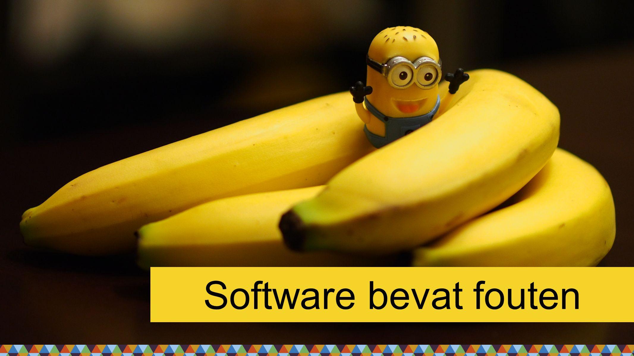 Software bevat fouten